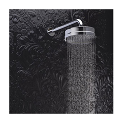 Hudson Reed Shower Head
