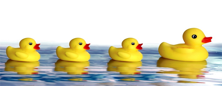 Childrens Rubber Ducks