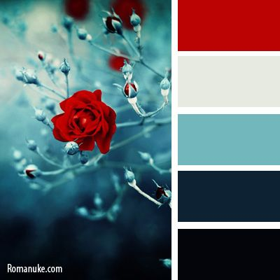 Bathroom Colour Ideas - Scemes & Combinations - Bella ...