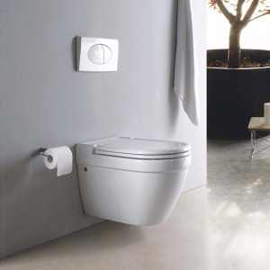 wall hung toilet 2