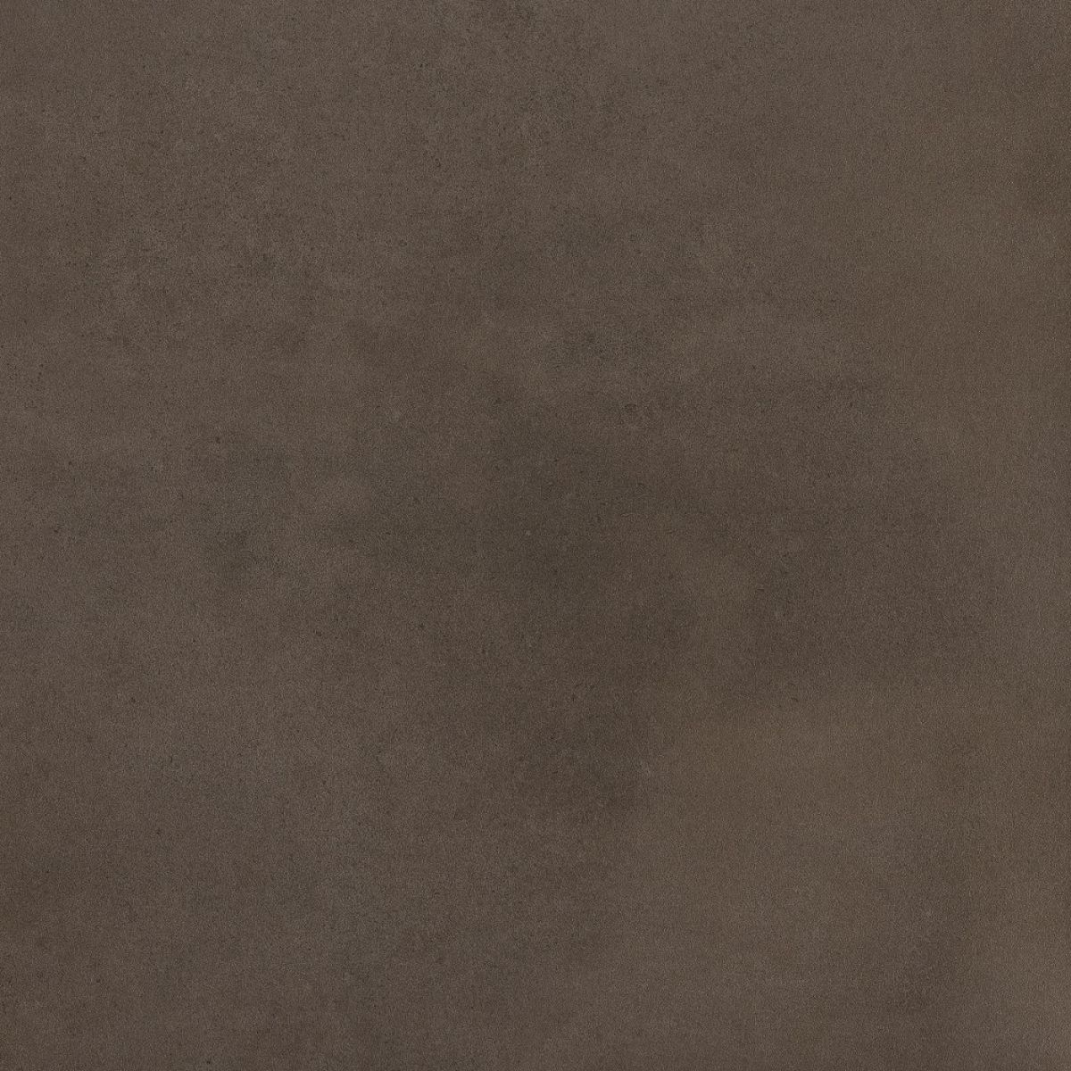 RAK Surface Matt Dark Greige Tile 300 x 600mm