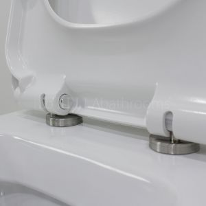 Elation Brearton Back To Wall Toilet Hinges
