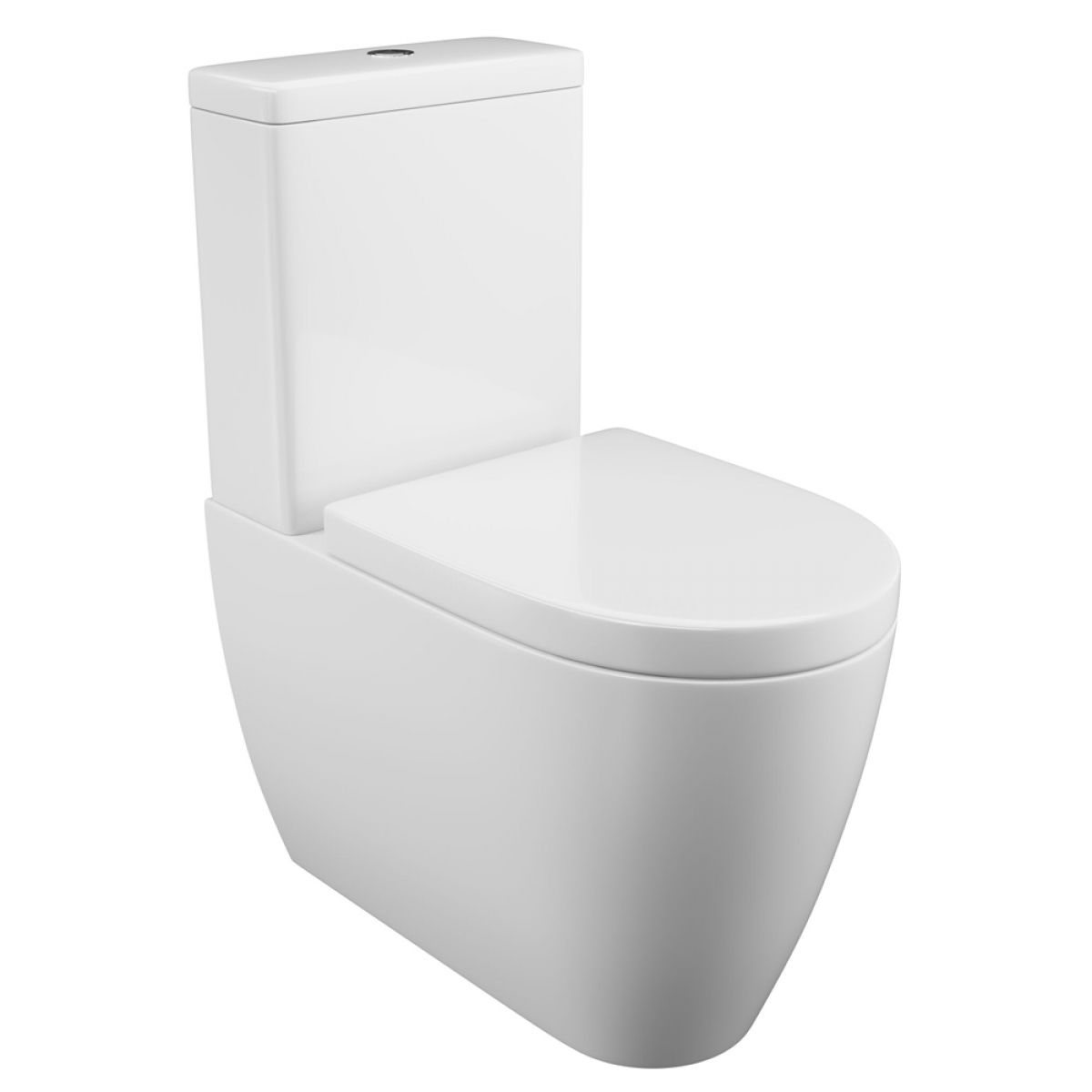 Cassellie Loxley Flush To Wall Toilet