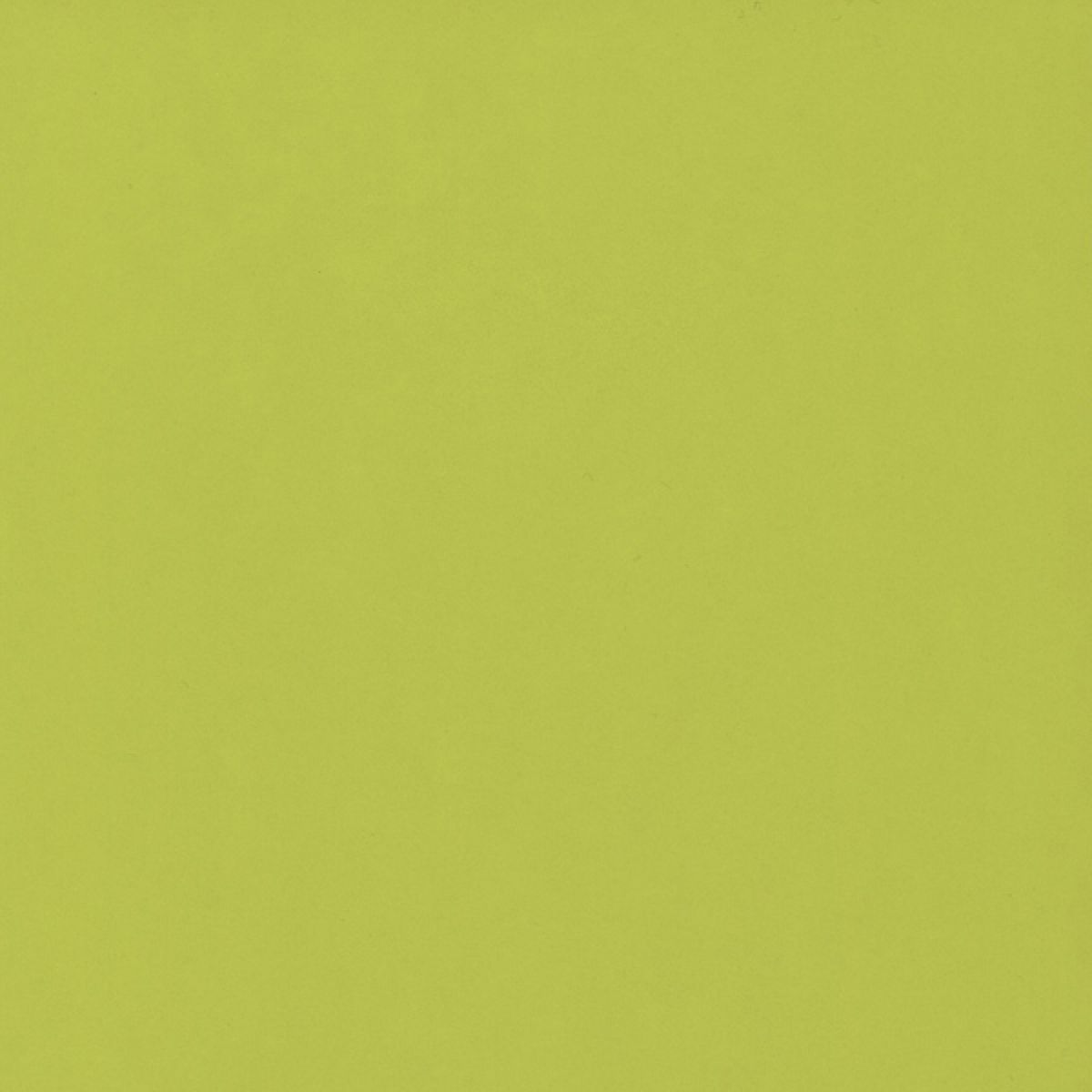Wetwall Gloss Lime Shower Panel